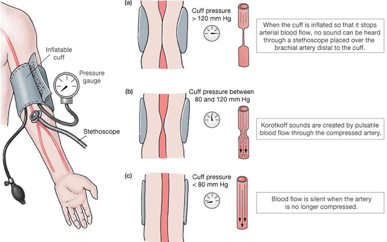 testovi na krvni tlak