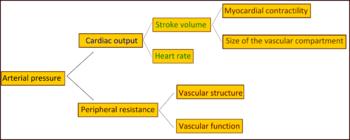 smokve od hipertenzije infekcije lijeve lopatice i daje do srca