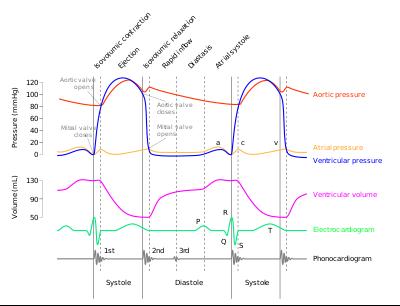 lijevi ventrikularni tlak i aorte se