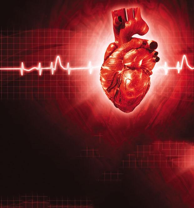 EKG pokazuje hipertenziju ,je li brusnica korisna za hipertenziju?