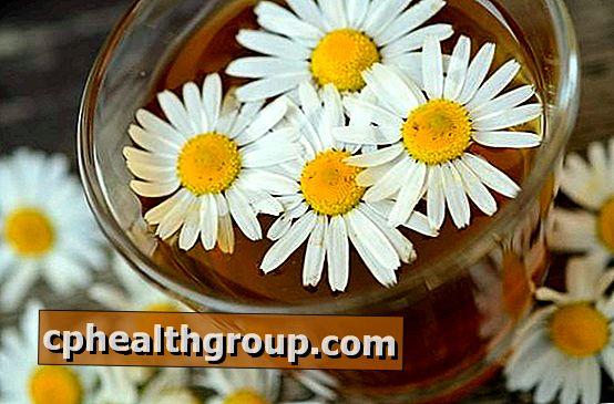 bach cvijeće od hipertenzije