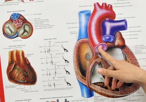 Jesu li kriterije za hipertenziju promijenili liječnici ili farmaceutska industrija? – theturninggate.com