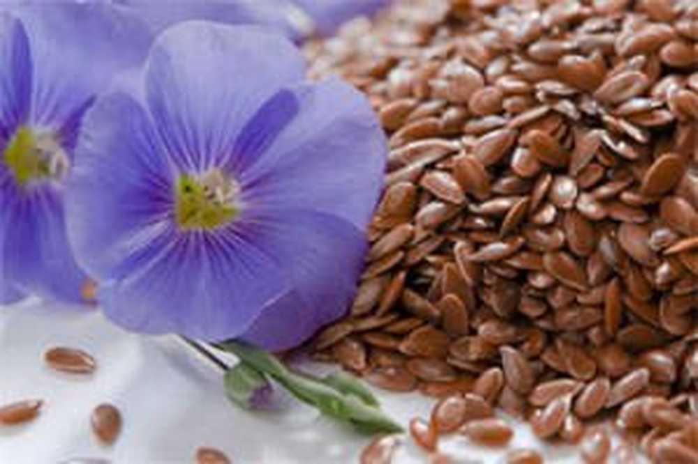 Narodni lijekovi za hipertenziju suncokretovih sjemenki