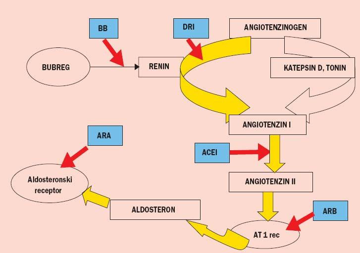 Hipertenzija 1,2,3 stupnja arterijska hipertenzija hipertenzija