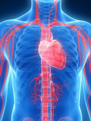 sredstva iz hipertenzije u kršenje cerebralne cirkulacije)
