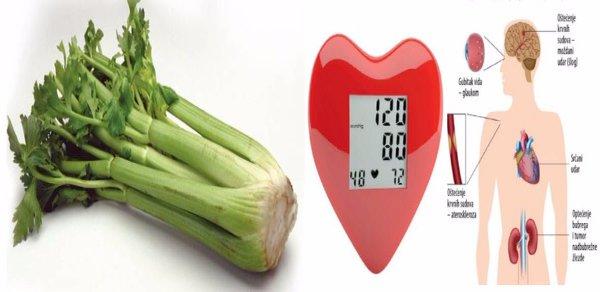 hipertenzija vegetarijanaca popis srčanih glikozida