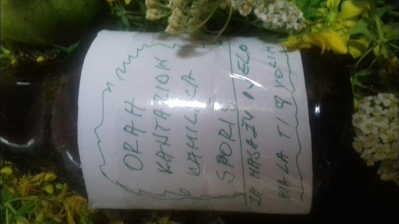 gospina trava može biti u mogućnosti piti s hipertenzijom)