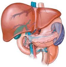 žučni mjehur hipertenzija