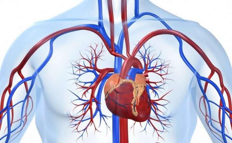 aritmija su hipertenzija