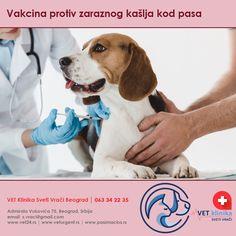 fizzaryadka hipertenzija