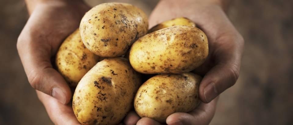 krumpir s hipertenzijom)