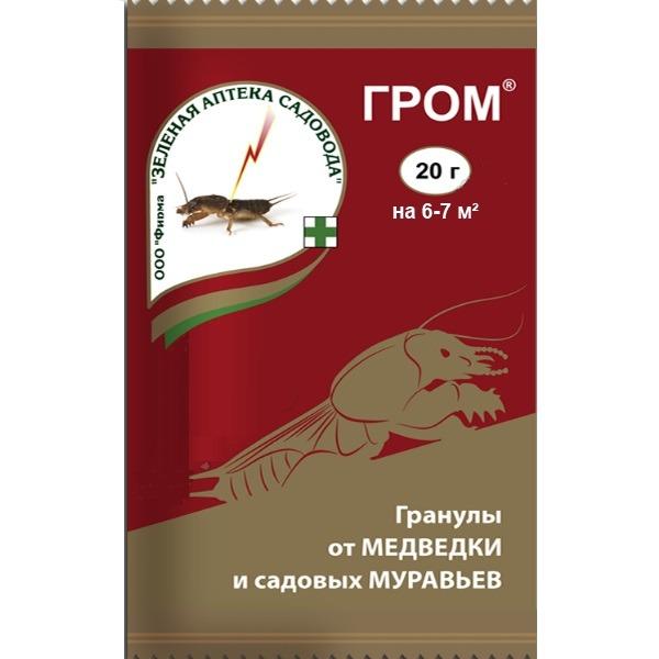 medvjed hipertenzija)