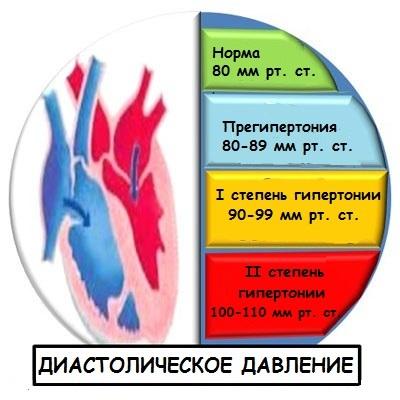 terafleks i hipertenzija