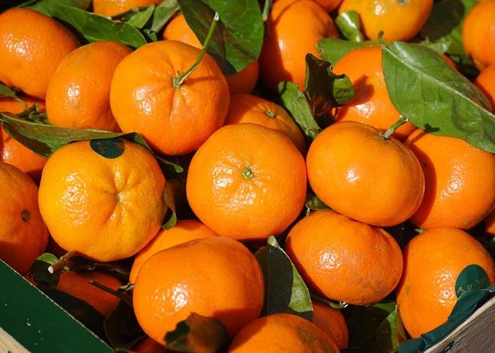 mandarine hipertenzija