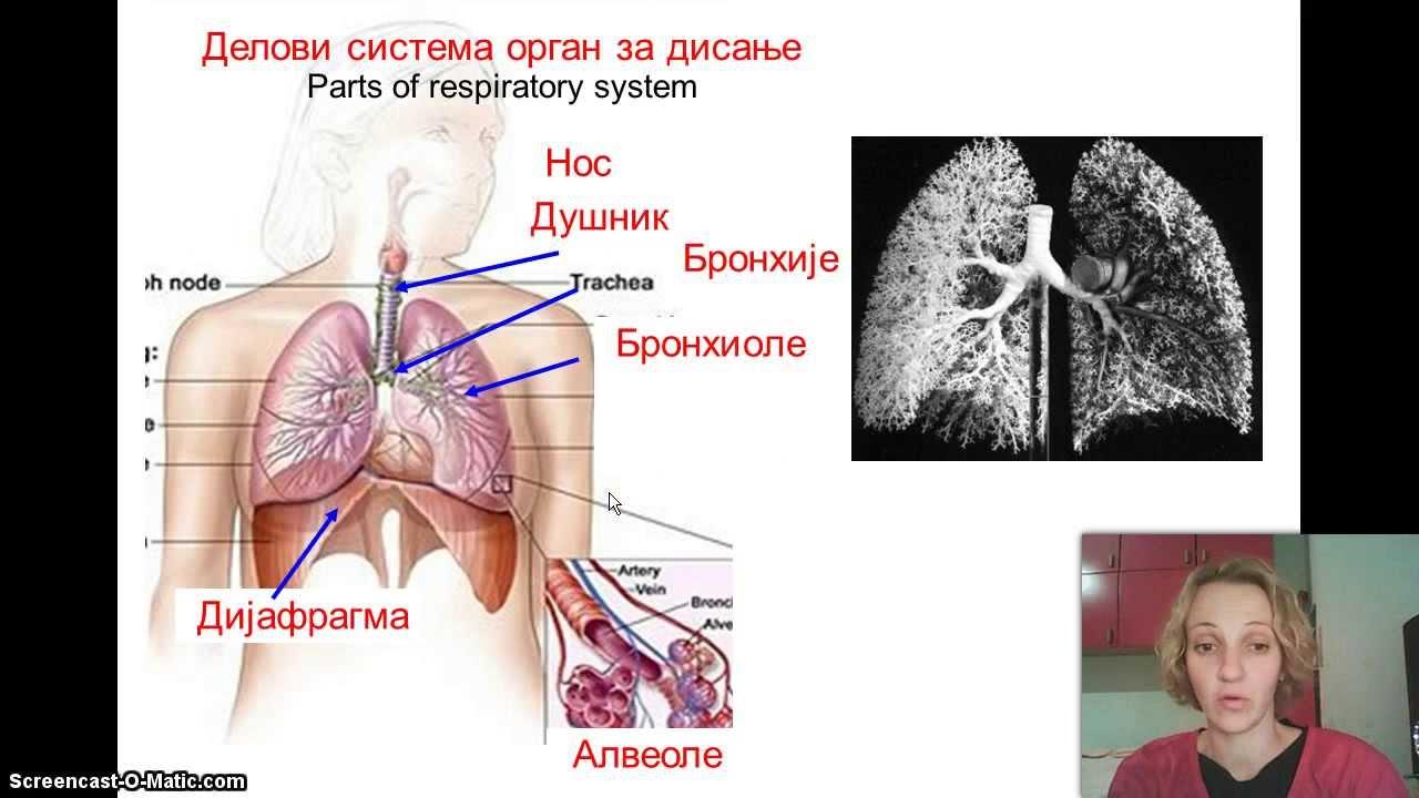 hipertenzija disanja)