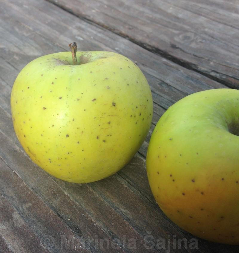 bilo jabuke su korisni hipertenziju)