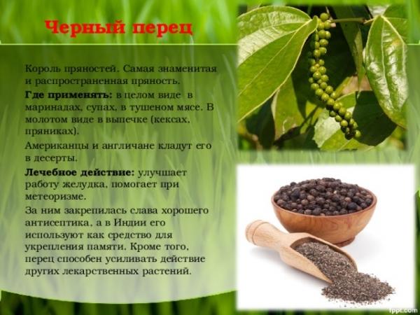mljeveni crni papar hipertenzije)
