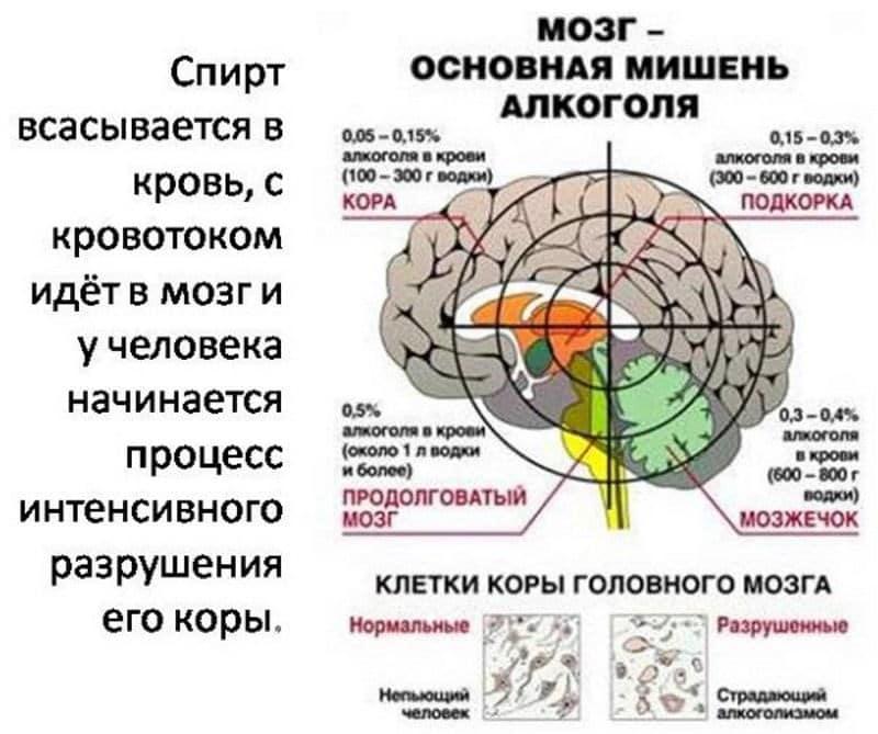 uljanovsk centar hipertenzije)