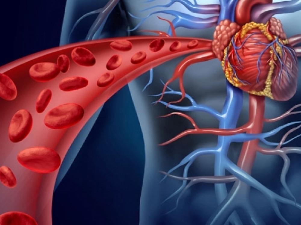 hipertenzija 3 vrste rizika 4 hipertenzija ugljik aktivni ugljen