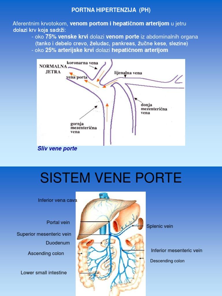hipertenzija, vene jetre
