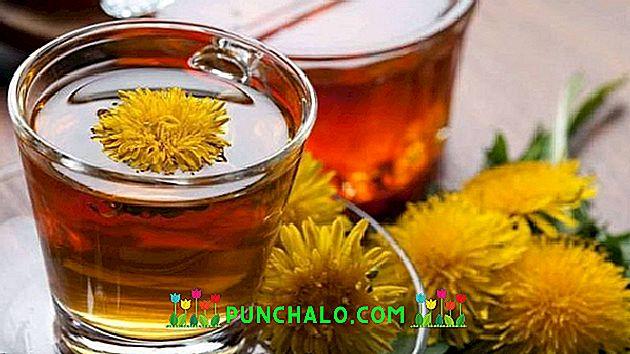 Maslačak, korijen, bezalkoholni integralni ekstrakt 50 mL - Soria Natural