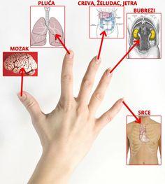 Bolest jetre hipertenzije