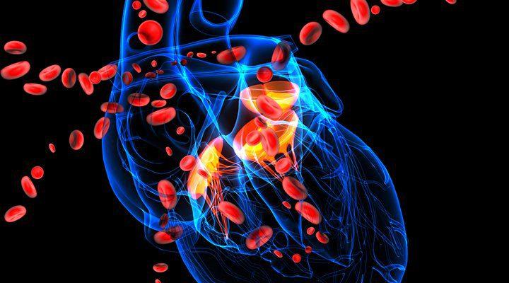 Vaskularna hipertenzija dijeta