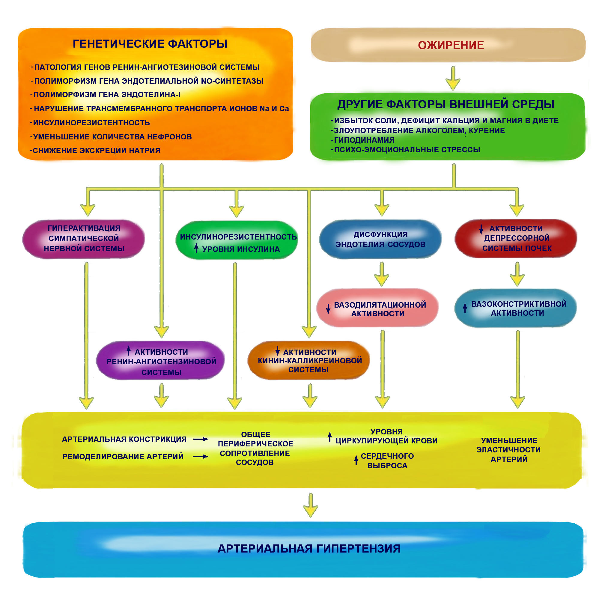 vazodilatacija hipertenzija