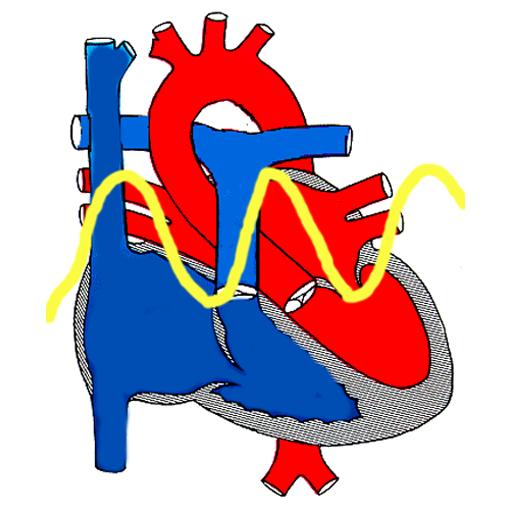 Svjetski dan zdravlja: U fokusu problem hipertenzije / Radio Sarajevo
