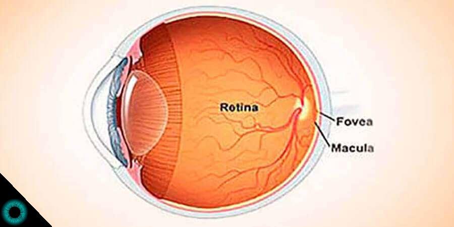 retina hipertenzije