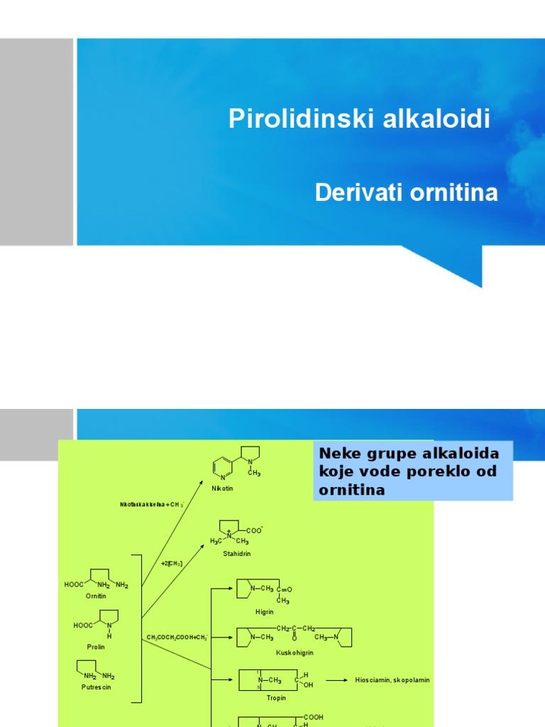 droga i njihovih analoga u hipertenzije)