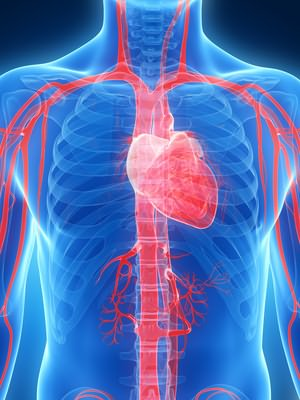 akutna skrb za hipertenziju algoritam peršin liječenje hipertenzije