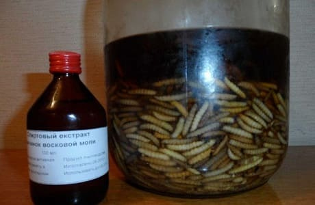 ekstrakt moljac hipertenzija vosak