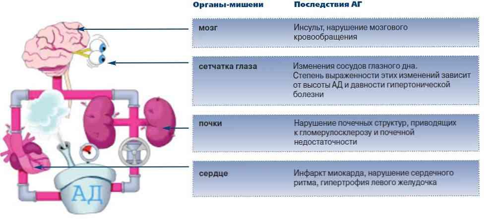 znakovi aritmije i hipertenzije)