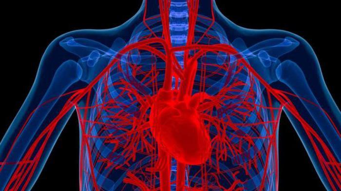 hipertenzije i osteochondrosis liječenje