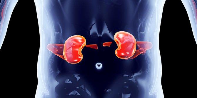 dijabetes, hipertenzija)