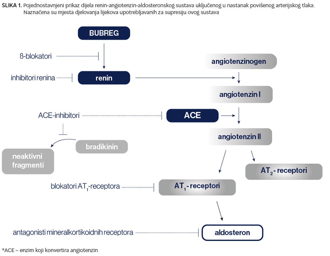 Važnost personaliziranog pristupa u liječenju arterijske hipertenzije - theturninggate.com