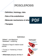 stupanj 2 hipertenzija risk4)