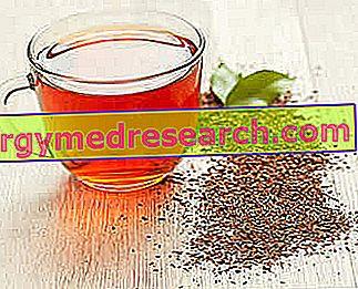 rooibos hipertenzija