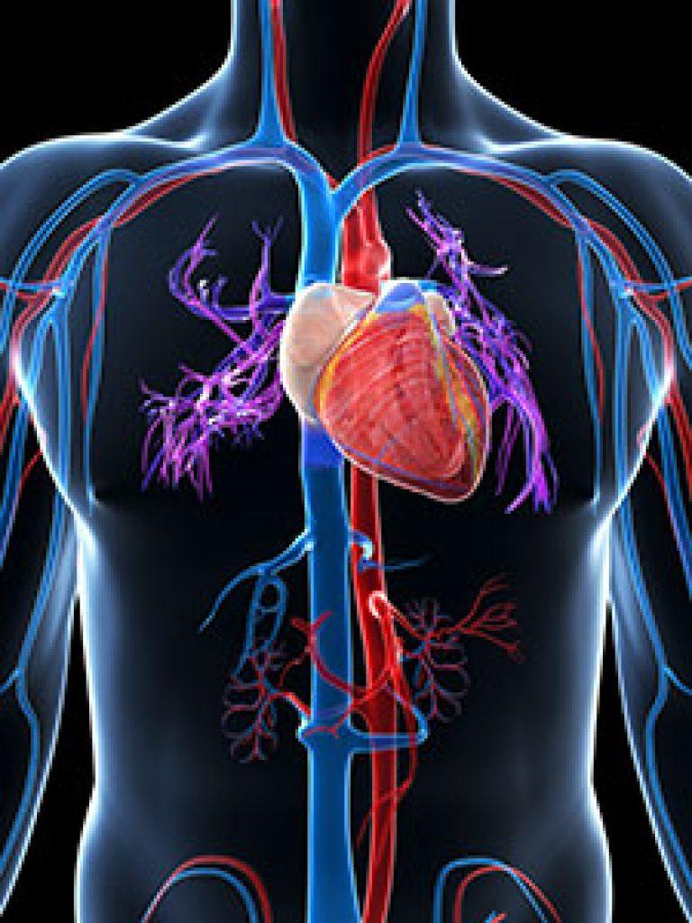hipertenzija zbog poremećaja živčanog sustava)