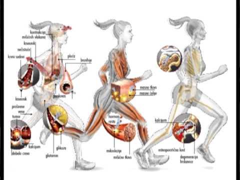 Povišen krvni tlak: naučite ga kontrolirati
