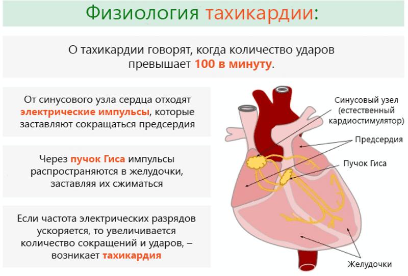 tahikardija i hipertenzija lijekove