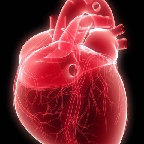 što je visoki krvni tlak lijeve klijetke srca što je visoki krvni tlak